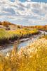 Bosque del Apache Nat'l Wildlife Refuge, New Mexico -0089 - 72 ppi