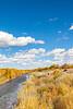Bosque del Apache Nat'l Wildlife Refuge, New Mexico -0117 - 72 ppi