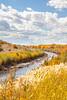 Bosque del Apache Nat'l Wildlife Refuge, New Mexico -0093 - 72 ppi