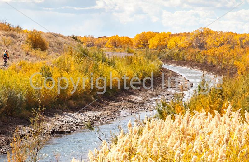 Bosque del Apache Nat'l Wildlife Refuge, New Mexico -0092 - 72 ppi - crop