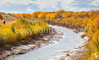 Bosque del Apache Nat'l Wildlife Refuge, New Mexico -0130 - 72 ppi - crop