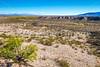New Mexico - Road toward Rio Grande from El Camino Real International Heritage Center - D7-C2-0092 - 72 ppi