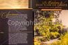 New Mexico - El Camino Real International Heritage Center - D7-C2-0052 - 72 ppi