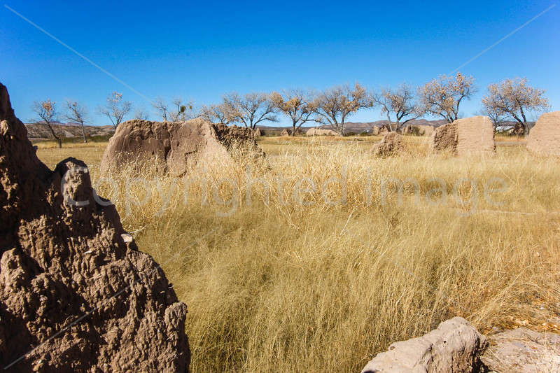 New Mexico - Fort Selden State Monument north of Las Cruces - C8b-'08-1304 - 72 ppi