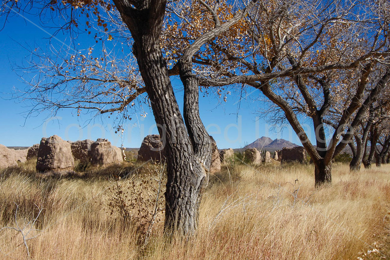 New Mexico - Fort Selden State Monument north of Las Cruces - C8b-'08-1355 - 72 ppi