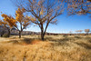 New Mexico - Fort Selden State Monument north of Las Cruces - C8b-'08-1312 - 72 ppi