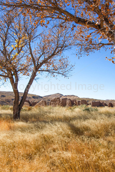 New Mexico - Fort Selden State Monument north of Las Cruces - C8b-'08-1309 - 72 ppi