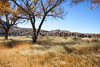 New Mexico - Fort Selden State Monument north of Las Cruces - C8b-'08-1308 - 72 ppi