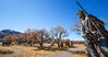 New Mexico - Fort Selden State Monument north of Las Cruces - C8b-'08-1293 - 72 ppi