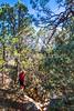 Cyclist on battlefield trail, Glorieta Unit of Pecos Nat'l Historical Park, NM - D4-C2-0393 - 72 ppi