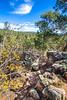 Battlefield trail, Glorieta Unit of Pecos Nat'l Historical Park, NM - D4-C2-0441 - 72 ppi
