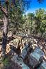 Battlefield trail, Glorieta Unit of Pecos Nat'l Historical Park, NM - D4-C2-0432 - 72 ppi