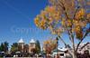 New Mexico - Scenes in Old Mesilla -  C8b-'08-1392 - 72 ppi