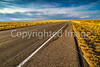 New Mexico - Intersection of US 60 & NM 47, west of Abo - D5-C2-0296 - 72 ppi