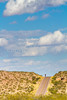 New Mexico -  Cyclist on NM 1, Camino Real, south of Bosque del Apache - D6-C1-0072 - 72 ppi