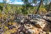 Battlefield trail, Glorieta Unit of Pecos Nat'l Historical Park, NM - D4-C2-0437 - 72 ppi
