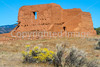Pecos National Historical Park, NM - D4-C1-0188 - 72 ppi