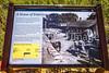 Battlefield trail, Glorieta Unit of Pecos Nat'l Historical Park, NM - D4-C2-0390 - 72 ppi