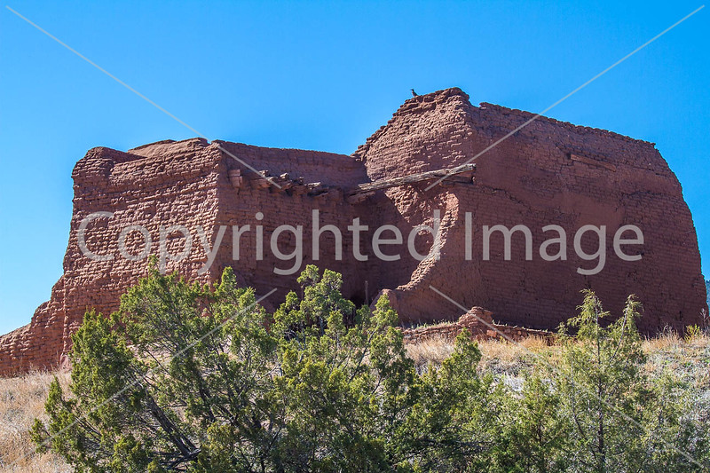 Pecos National Historical Park - D1-3 - C1-0144 - 72 ppi