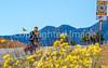 Cyclist on Santa Fe Trail near Pecos Nat'l Historical Park - D1-3 - C1-0092 - 72 ppi-2