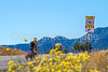 Cyclist on Santa Fe Trail near Pecos Nat'l Historical Park - D1-3 - C1-0092 - 72 ppi