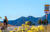 Cyclist on Santa Fe Trail near Pecos Nat'l Historical Park - D1-3 - C1-0097 - 72 ppi