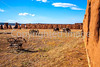Fort Union National Monument, NM - D4-C3-0407 - 72 ppi