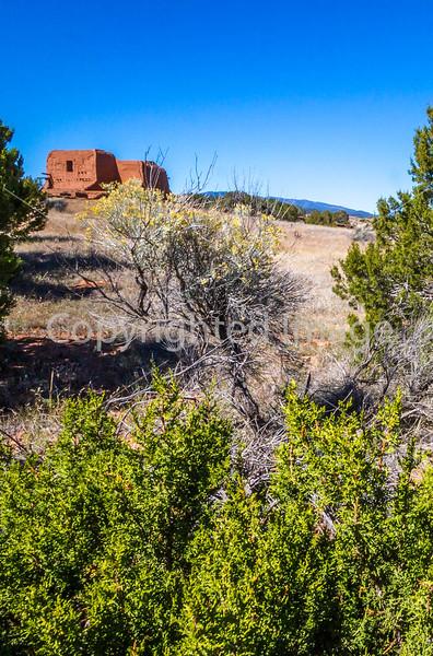 Pecos National Historical Park, NM - D1-3 - C2-0278 - 72 ppi-2