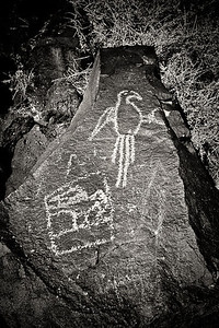 Bird - Boca Negra Canyon trail Rio Grande Style Petroglyph Petroglyph National Monument, New Mexico