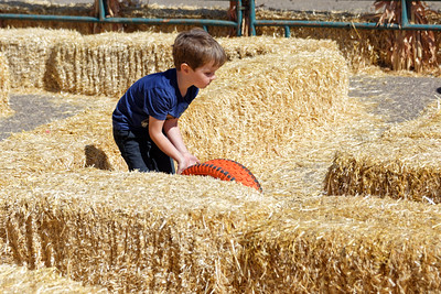 Pumpkin Patch_101119-026