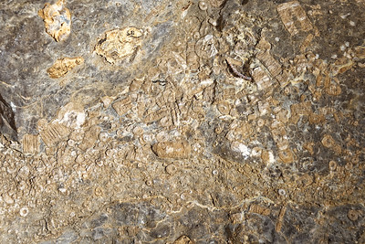 Sandia Cave-012