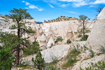 Canyon Trail Hoodoos