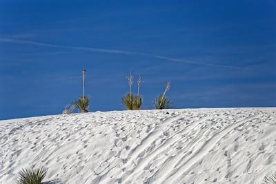 White Sands-003-2021