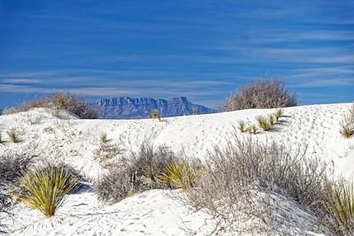 White Sands-005-2021