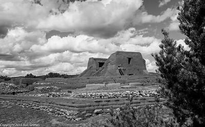 2015 - Pecos NHS-2464