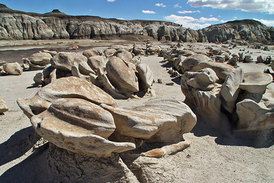 Bisti/De-Na-Zin Wilderness, NM
