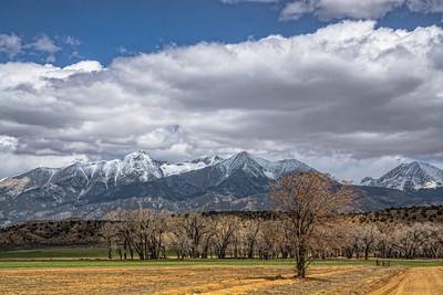 Sangre De Cristo Mountains with Cottonwoods