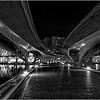 Bridges  - Cité des Arts et des Sciences  -  Valence