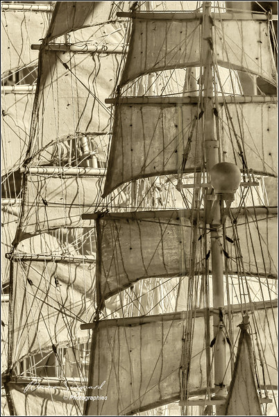 Sails and Ropes