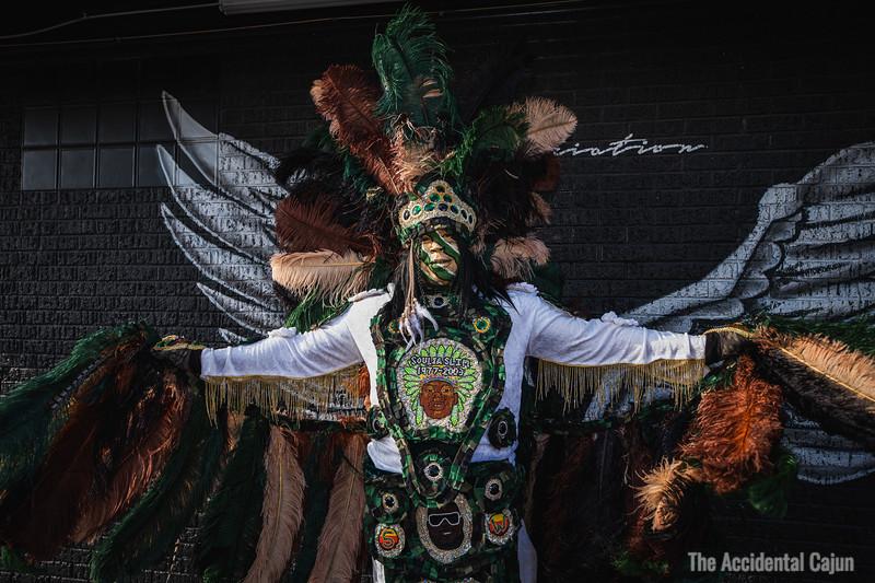 Wings, Flag Boy Gizmo, St. Joseph's Night 2020