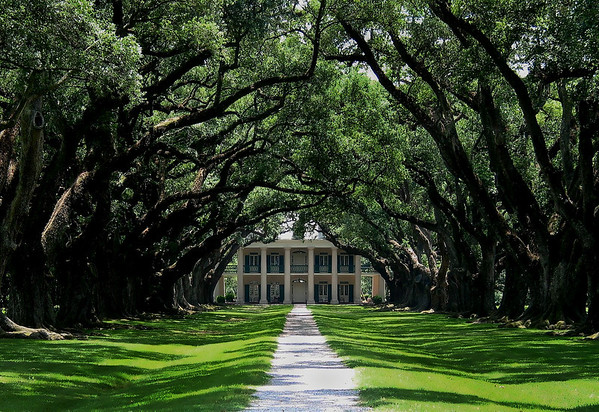 New Orleans * click to view gallery