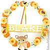 Woodland Animals - Personalized Child's Wreath $27 /$30 + shipping