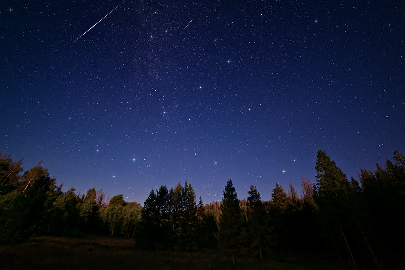 Perseid Meteor Shower in Moonlight
