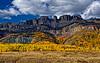 Peak Aspen Scenery in the Colorado Rockies