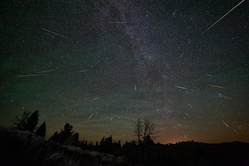 2015 Perseid Profusion of Meteors