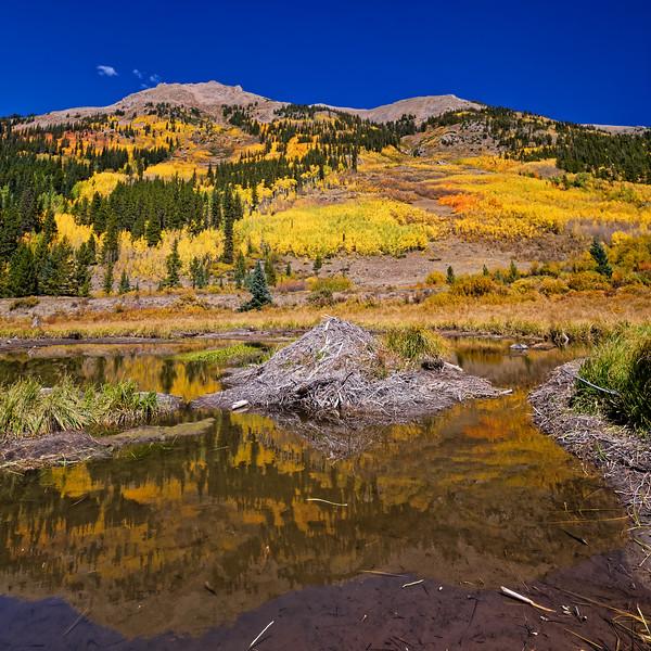 Fall Lodging in Colorado