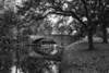 Audubon Park Finery