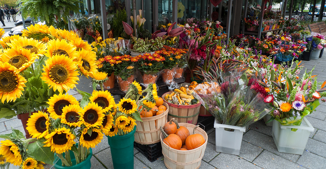 Flower stall - Montreal