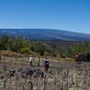 Mauna Loa from Pu'u Huluhulu