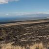 Looking towards Kohala on Mauka Highway.  Pu'u Anahulu is the huge lava flow to the right which emerged from Pu'u Wa'a Wa'a about 106,000 years BP